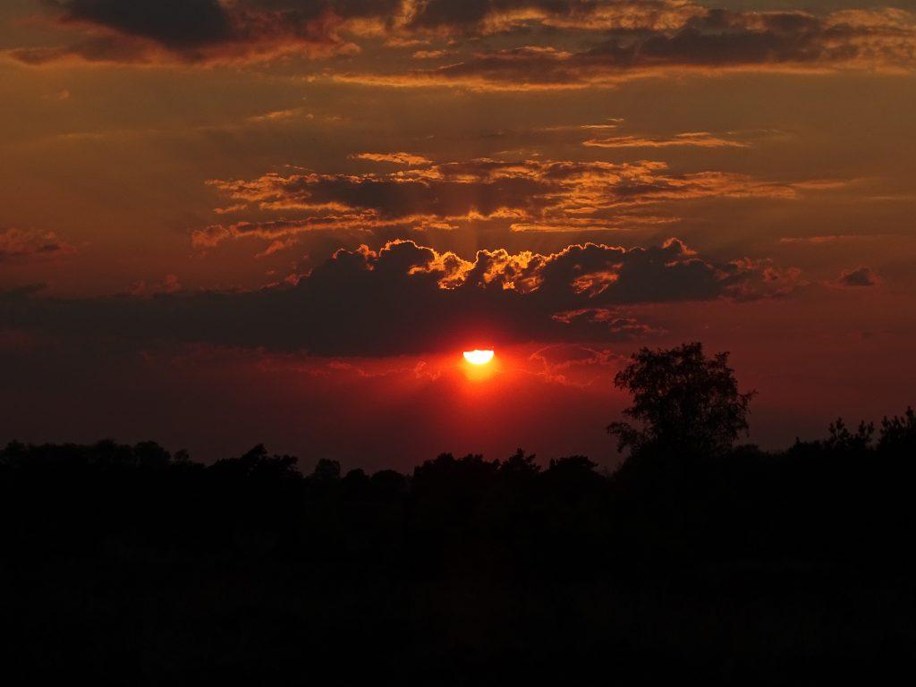 zonsondergang Veluwe