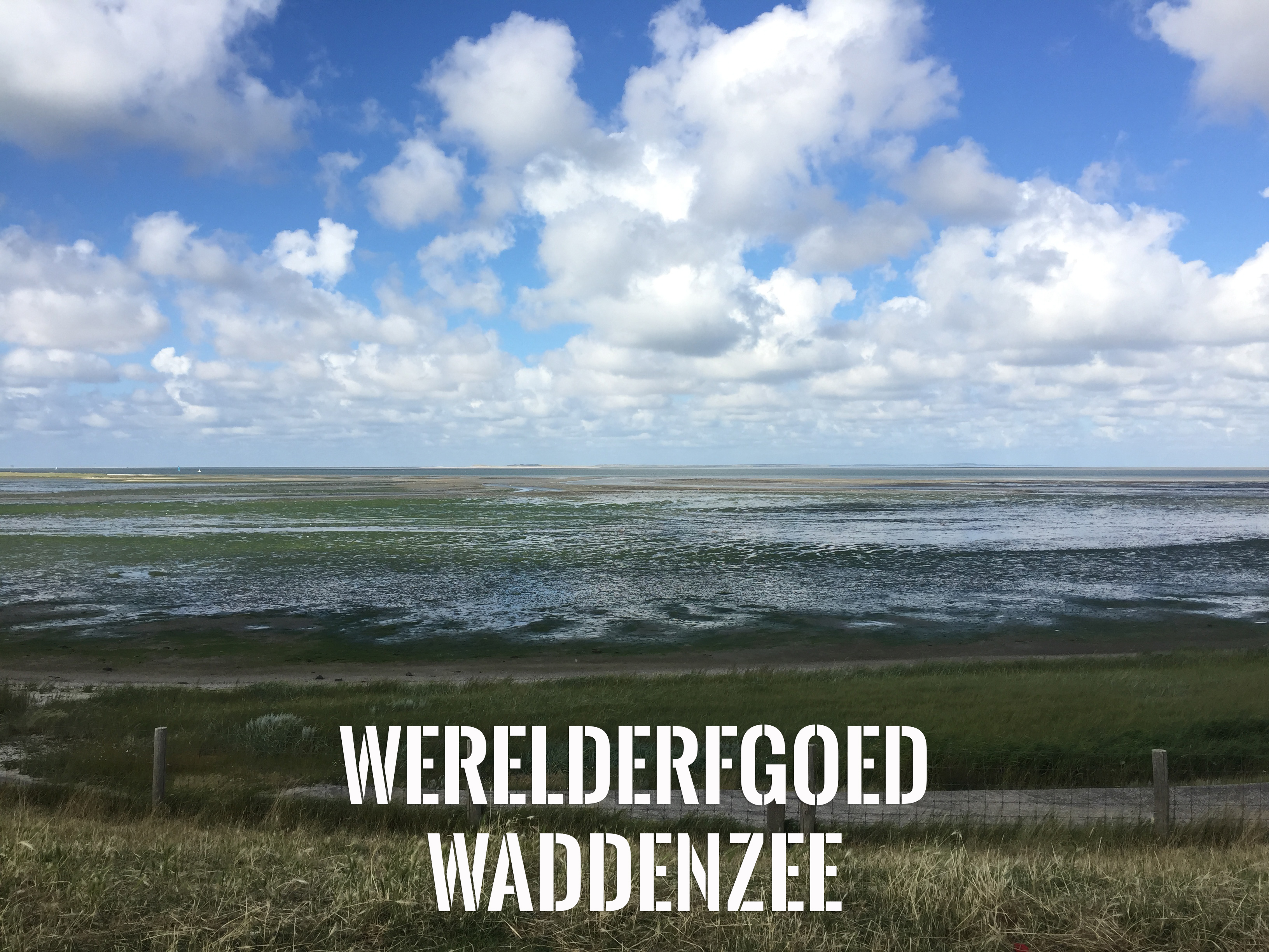WADDENZEE UNESCO