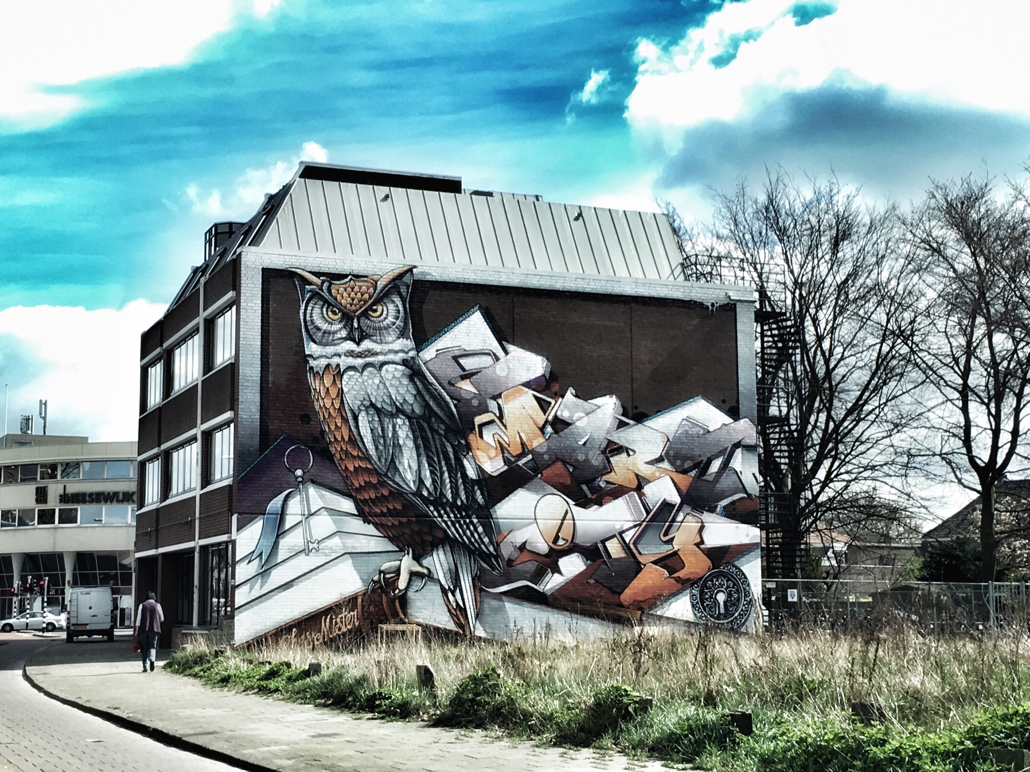 street art eindhoven kronehoefstraat chas en mister