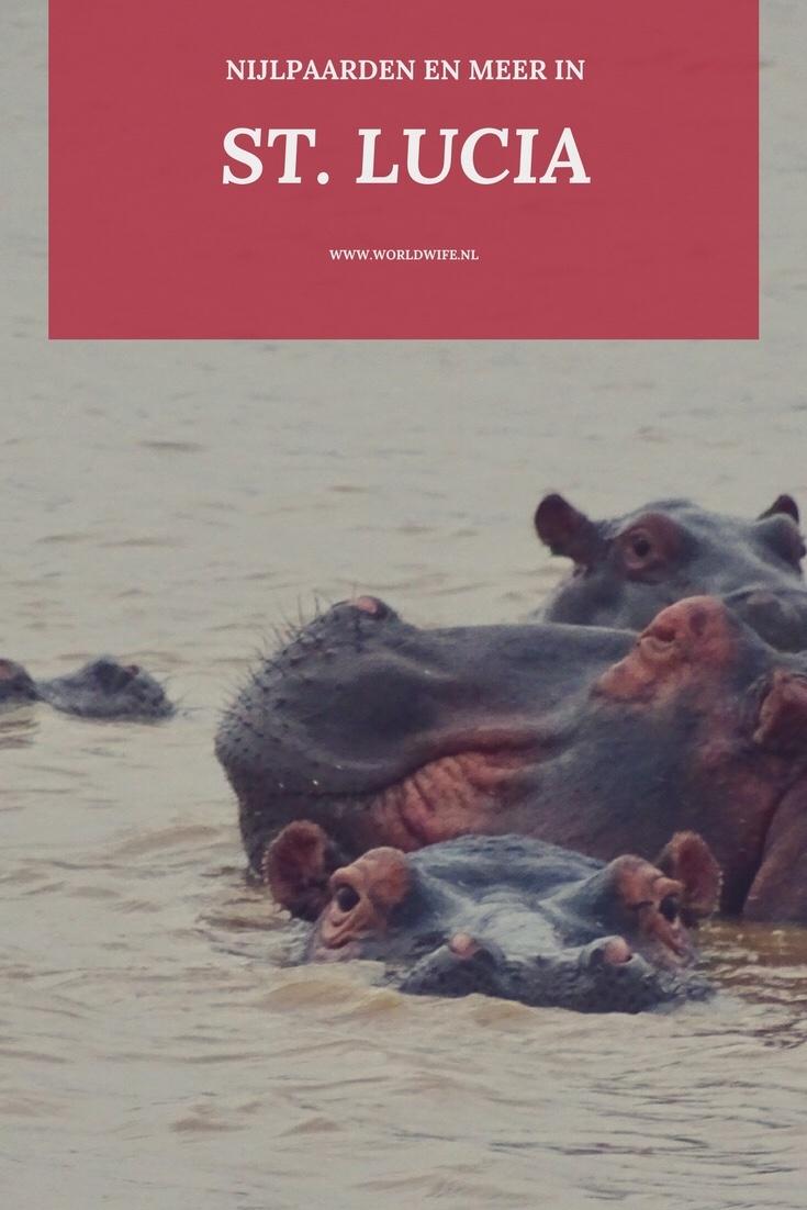St. Lucia, waar de nijlpaarden door de stad lopen | Zuid-Afrika | nijlpaardencruise | Worldwife.nl
