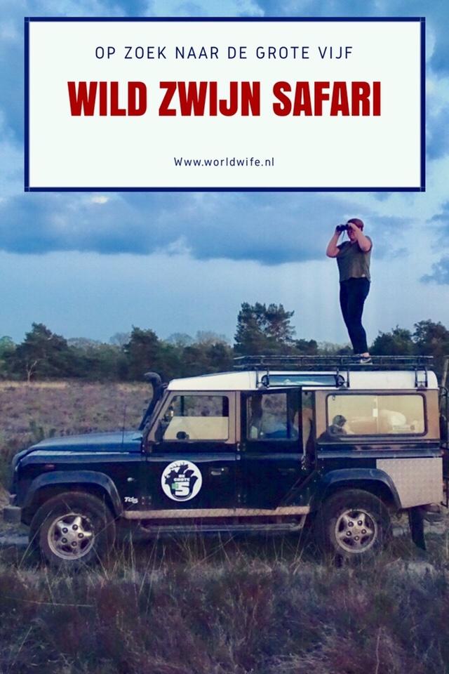 Op zoek naar de Grote Vijf van Nederland: wilde zwijnen op de Veluwe #safari #bigfive