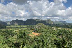 Cuba: zien en doen in Viñales