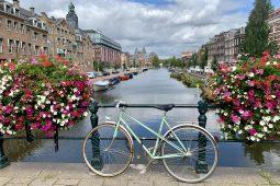 Fietsen met een local in Amsterdam