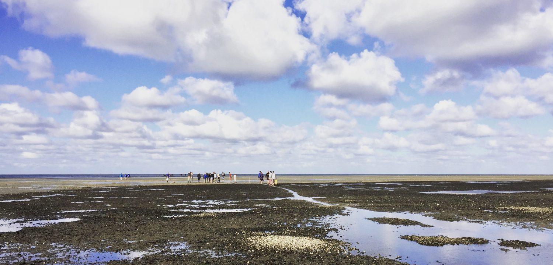 5 tips om de Waddenzee te beleven #Nederland #Waddeneilanden #Wadden