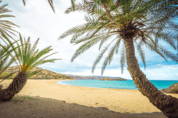Vai Beach, het mooiste strand op Kreta